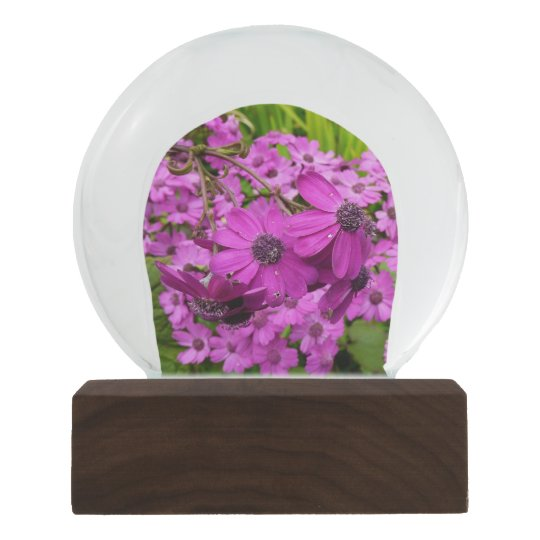 Purple Flowers from San Francisco Snow Globes