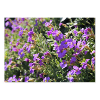 Purple flowers in bloom during Spring Business Card Templates