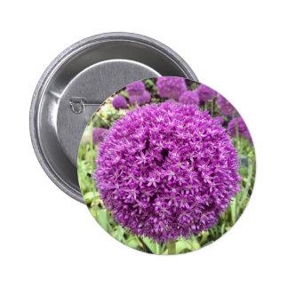 Purple Flowers Photo Pins