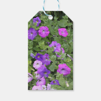 Purple Flowers Spring Garden Theme Petunia Floral Gift Tags