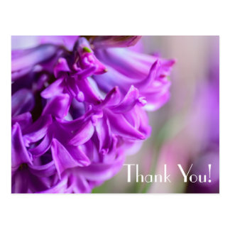 purple flower thank you postcards zazzlecomau