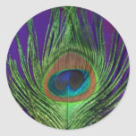 Purple Foil Single Peacock Classic Round Sticker