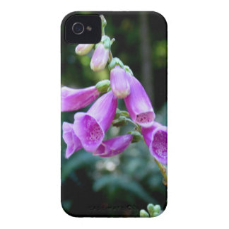 Purple Foxglove Flower Case For the Blackberry Bol iPhone 4 Cases