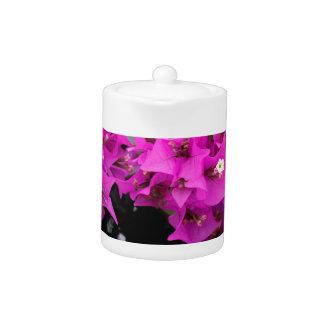 Purple Fuchsia Bougainvillea Background