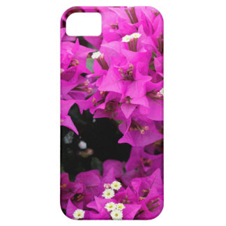 Purple Fuchsia Bougainvillea Background iPhone 5 Cases
