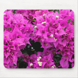 Purple Fuchsia Bougainvillea Background Mouse Pad