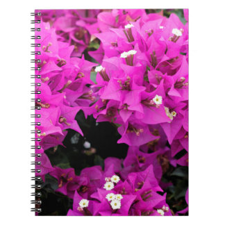 Purple Fuchsia Bougainvillea Background Notebooks