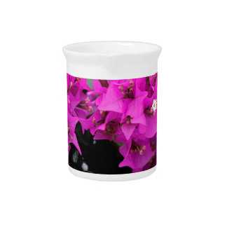 Purple Fuchsia Bougainvillea Background Pitcher