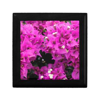 Purple Fuchsia Bougainvillea Background Small Square Gift Box