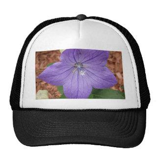 Purple garden flower trucker hat