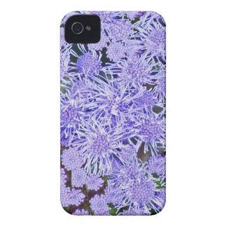 Purple garden of mums iPhone 4 cover