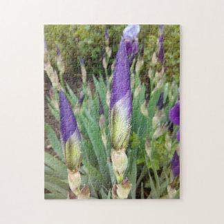 Purple German Iris Buds Jigsaw Puzzle
