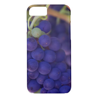 Purple Grape Bunches On The Vine iPhone 7 Case