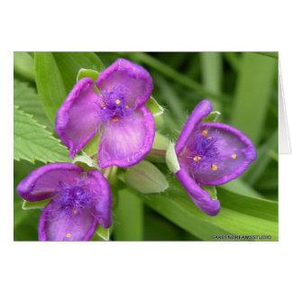 Purple Hairy Flower Blank Greeting Card