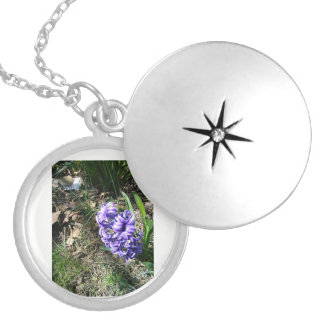 Purple Hyacinth Locket Necklace