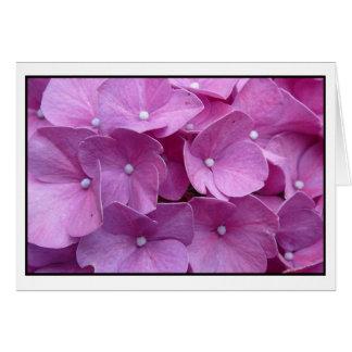 Purple Hydrangea Blossom Card