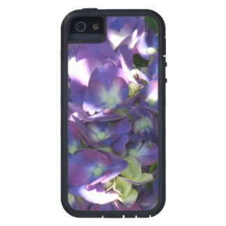 Purple Hydrangea Flowers iPhone 5 Cover