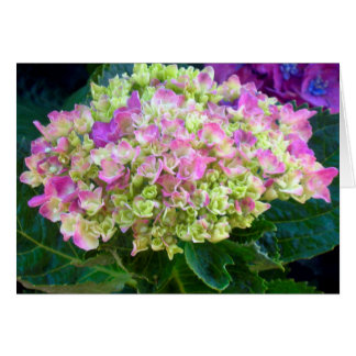 Purple Hydrangea Sweet Friend Card