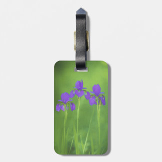 Purple Iris Bag Tag