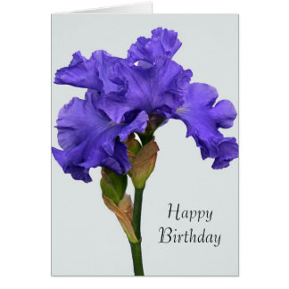 Purple Iris Birthday Card
