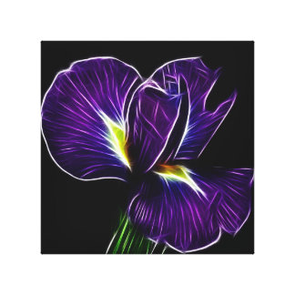 Purple Iris canvas