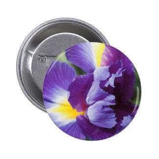 purple iris close up pins