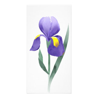 purple iris flower, collage of watercolor doodle photo greeting card