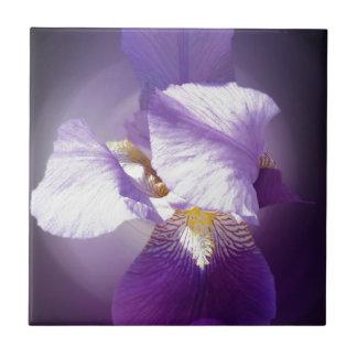 purple iris flower small square tile