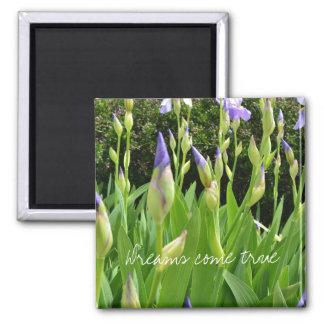 Purple Iris Flowers Dreams Come True Square Magnet