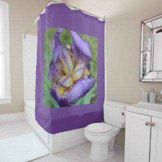 Purple Iris (Iris Germanica) Shower Curtain