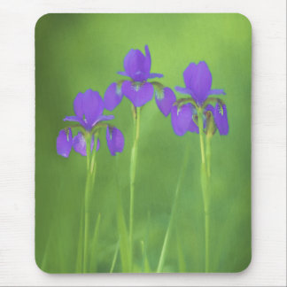 Purple Iris Mouse Pad