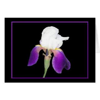 Purple Iris Notecards Note Card