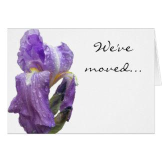 Purple Iris Photograph Announcement Note Card