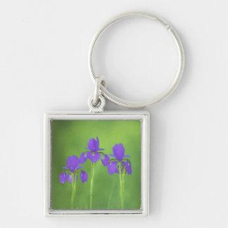 Purple Iris Silver-Colored Square Key Ring