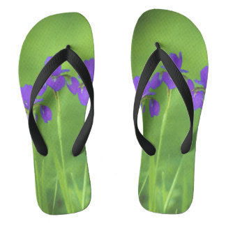 Purple Iris Thongs