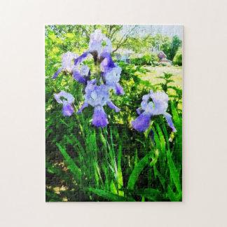 Purple Irises in the Suburbs Jigsaw Puzzle
