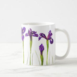 Purple Irises on White Background - Floral Iris Basic White Mug