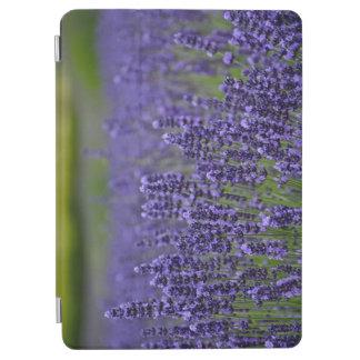 Purple lavender flower garden iPad air cover