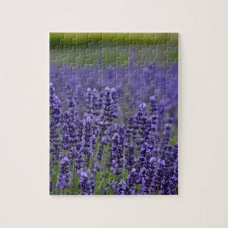 Purple lavender meadow jigsaw puzzle