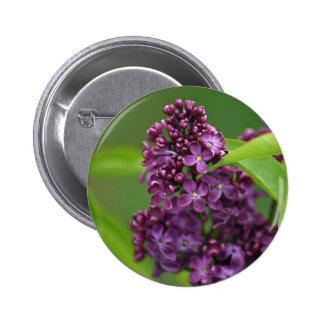 Purple Lilac Button