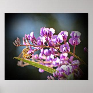 Purple Lilac Vine Poster