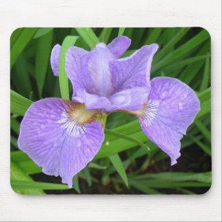 Purple lily/iris mousepad