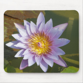 Purple Lotus/Water Lily Mouse Pad