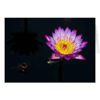 Purple Lotus Waterlily Dragonfly Nymph Card