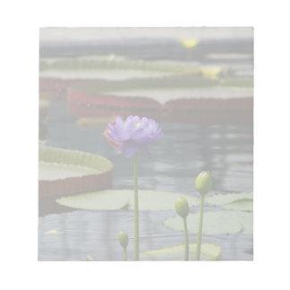 Purple Lotus Waterlily Flower Notepad