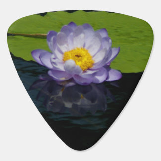 Purple Lotus Waterlily Guitar Pick