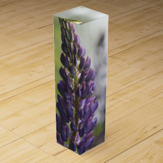 Purple Lupine Wine Box