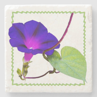 Purple Morning Glory Floral Photography Cut Out Stone Coaster