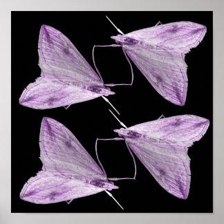 Purple Moth Art Print
