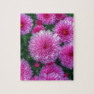 Purple Mums Jigsaw Puzzle